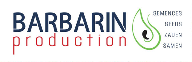 Logo Barbarin Production