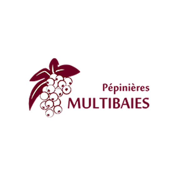 logo multibaies